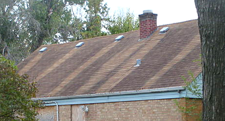 Zinc Oxide For Roof Moss Shingles How Effective To Use