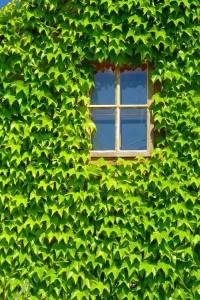 green design checklist 1