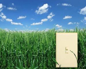 green home analysis