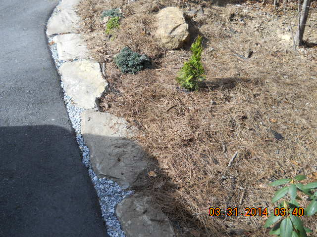 weed control around my house
