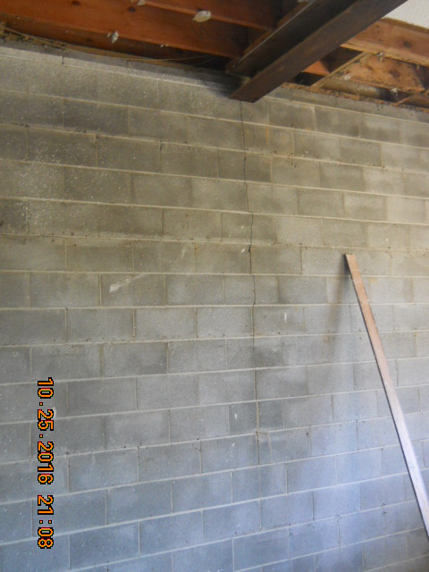 mold mitigation and waterproofing